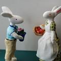ウサギのお父さんとお母さん