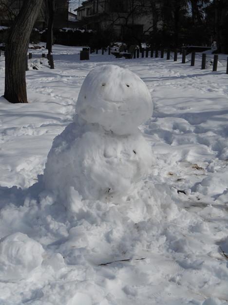 林の雪だるま2