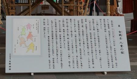 01 博多祇園山笠 飾り山 博多駅 2013年 女戦士八重の桜写真03