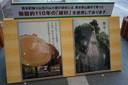 01 博多祇園山笠 飾り山 博多駅 2013年 女戦士八重の桜写真10