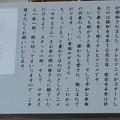 Photos: 02 博多祇園山笠 飾り山 博多駅 2013年 サザエさん写真03