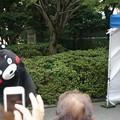 Photos: 2013年7月26日 福岡市役所ふれあい広場 山鹿市観光物産展 山鹿灯籠まつり くまモン07