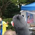 Photos: 2013年7月26日 福岡市役所ふれあい広場 山鹿市観光物産展 山鹿灯籠まつり くまモン10