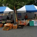 Photos: 2013年7月26日 福岡市役所ふれあい広場 山鹿市観光物産展 山鹿灯籠まつり くまモン28
