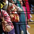 写真: 2014年 大的大会(通し矢)