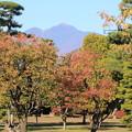 Photos: 藤田記念庭園・紅葉と岩木山01-12.10.27