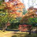 Photos: 藤田記念庭園・紅葉02-12.10.27