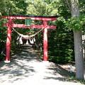 Photos: 山本稲荷神社P1010669