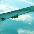 Photos: 寂しい水たまり