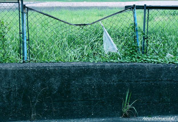 証拠3.捻じ曲げられたフェンスと
