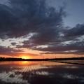Photos: 田園の夕日 映る空雲