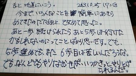 IMG_20131025_172209.jpg