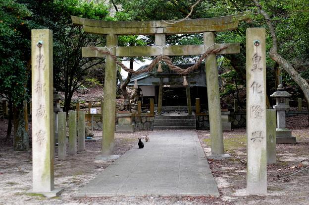 大久野島神社(屋根が壊れてました。)