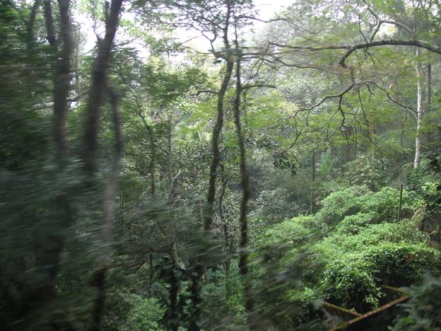 登山電車風景2