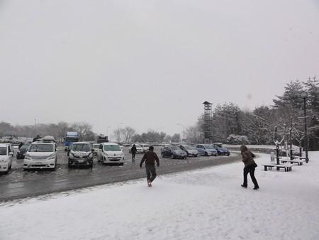PAエリアも良い感じの雪です。