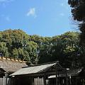 Photos: 月讀宮にて IMG_6171_2