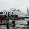T-33 #254 IMG_6950_2