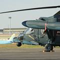 Photos: 県営名古屋空港 エンブラエルと小牧基地 UH-60J  IMG_4081_2