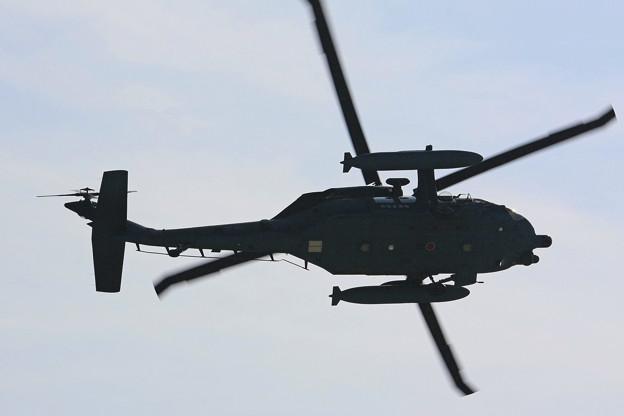 救難教育隊 UH-60J #546 IMG_8648_2