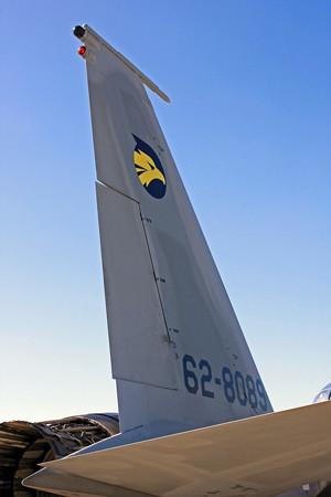 F-15DJ #089 第6航空団第306飛行隊 IMG_9494_2