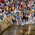 写真: 神馬 勇壮に    DSC_0992