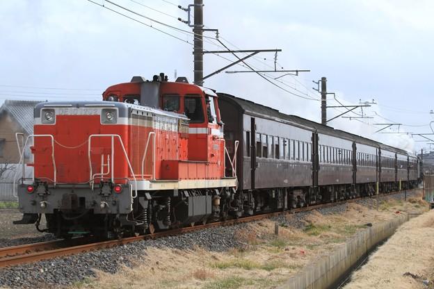 フォト蔵試9421レ C61 20+旧型客車 6両+DE10 1202アルバム: 2011年~ (5243)写真データ百瀬さんの友達 (54)フォト蔵ツイート