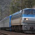 8862レ EF66 113+東武60000系61602F+61601F 12両