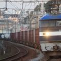 Photos: 54レ EF210 11+コキ