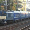 Photos: 回9564レ EF64 1031+24系 6両+EF65 1102