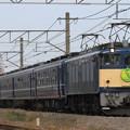 Photos: 9632レ EF64 38+12系 5両+C61 20