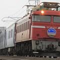 2021レ EF81 138+24系 9両