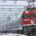 9715レ EF81 95+24系 9両+EF64 38