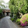 写真: 寺社の街 (新宿区須賀町)