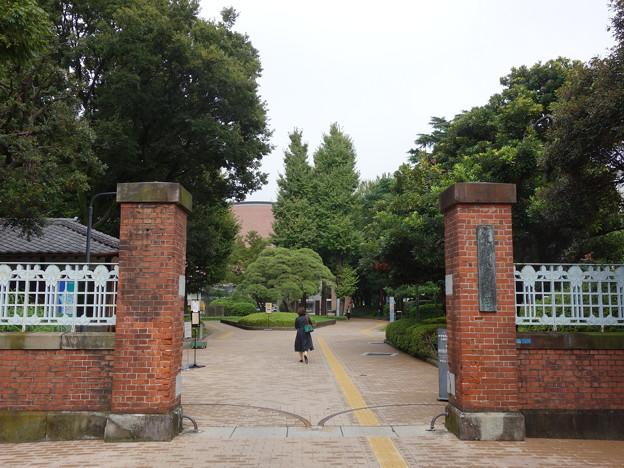 東京芸術大学