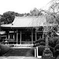Photos: 青柳寺 (神奈川県相模原市南区上鶴間本町)