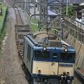 Photos: _MG_1083 EF64-1012 『鹿島貨物』 73レ