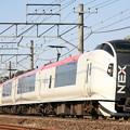 Photos: _MG_0035 E259系 成田エクスプレス