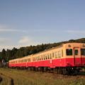 _MG_0055 小湊鉄道