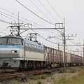 Photos: _MG_4652 EF66 125牽引の貨物列車(列番不明)