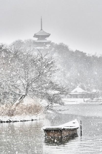 横浜本牧三溪園雪景色。