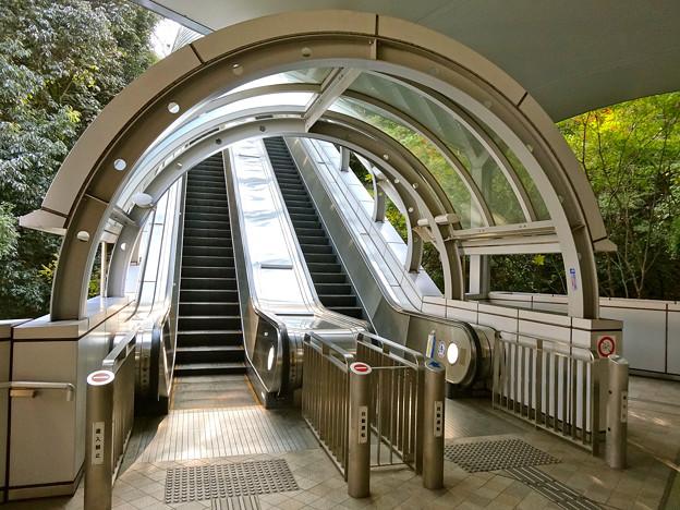 比治山スカイウォーク Hijiyama skywalk