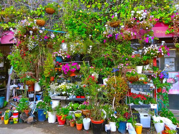 フローリストやぎ florist Yagi 広島市中区銀山町
