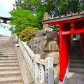 Photos: 宇佐神社 稲荷神社 呉市警固屋4丁目