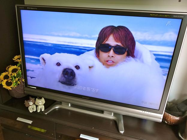 NHK BSプレミアム 浜田省吾ライブスペシャル 僕と彼女と週末に