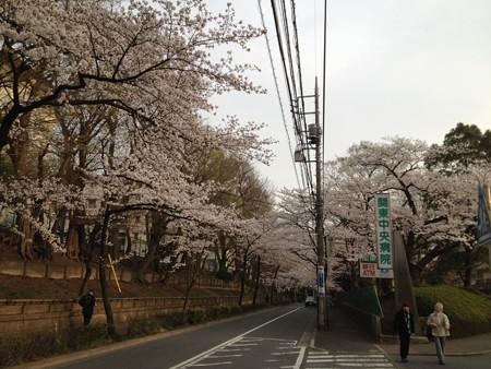 関東中央病院1