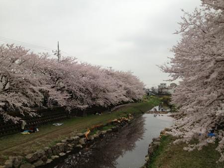 御塔坂橋付近