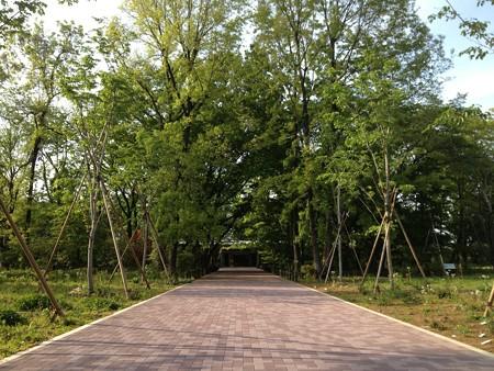 植物多様性センター1