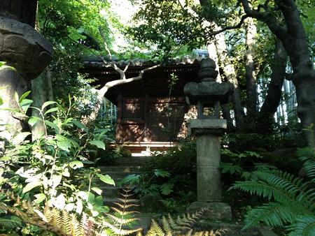 根津美術館庭園5