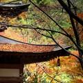 念仏寺の堂宇4