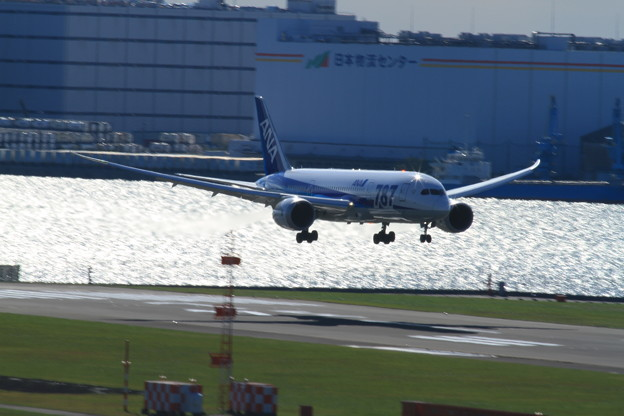 Photos: Dreamliner